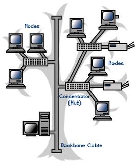 Topologi Pohon ( Tree Topology )
