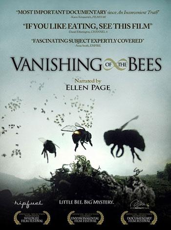 Arıların Kayboluşu