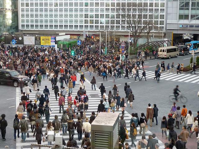 cosa vedere a tokyo, shibuya crossing