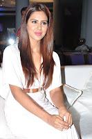 Sonam Bajwa Stills (54).jpg