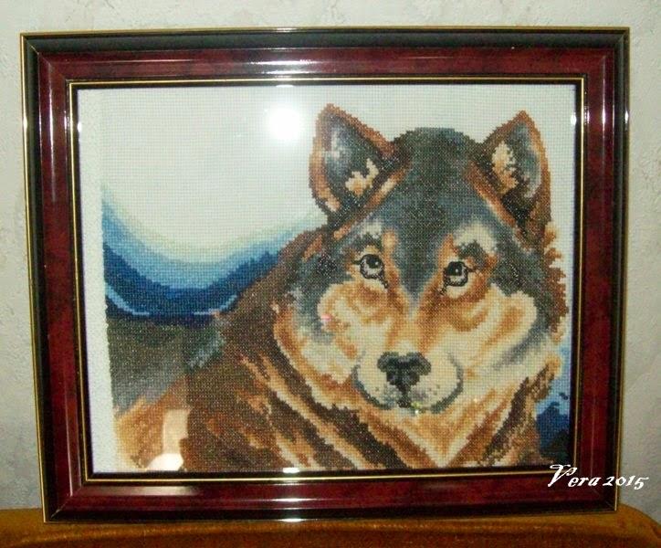 Wolf xszemes