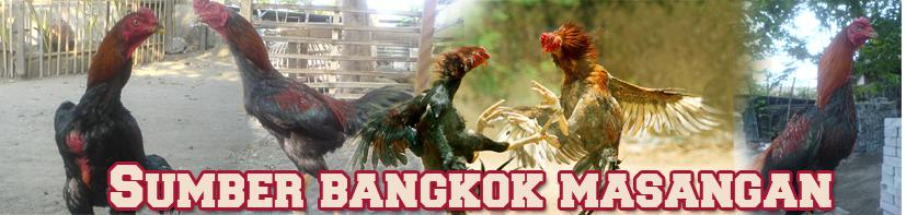 Sumber Bangkok Masangan Wetan