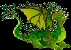 la caza del tesoro premio dragon bosque profundo