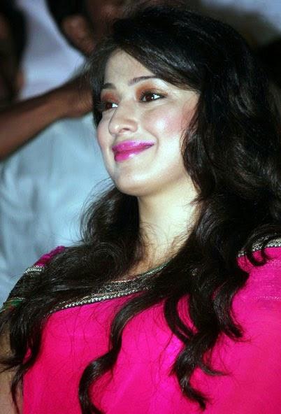 Lakshmi Rai Saree