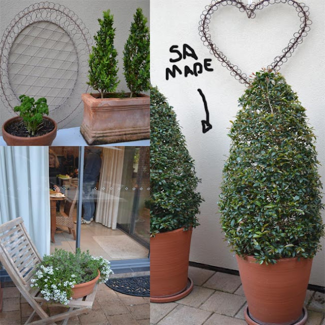 Serenity nursery blog a day with family in a topiary for Courtyard landscaping adelaide
