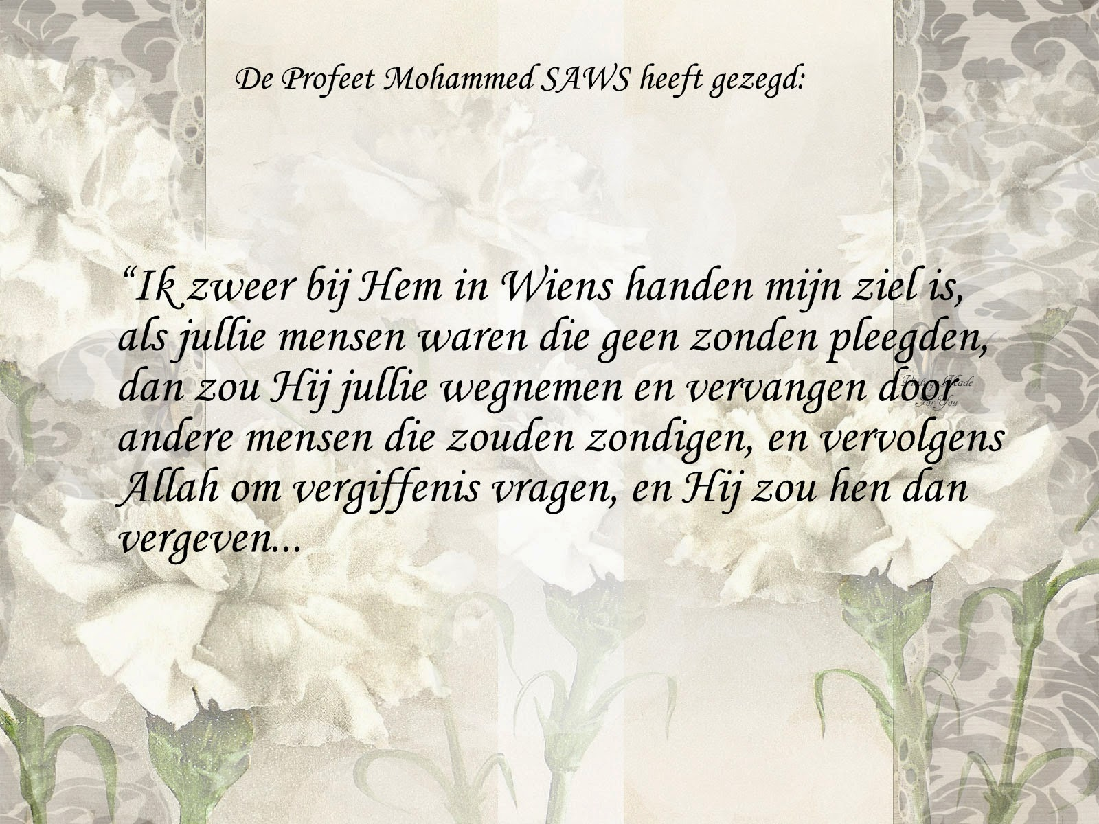 Citaten Uit Koran : Citaten en wijze woorden uit de islam allah vergeeft onze