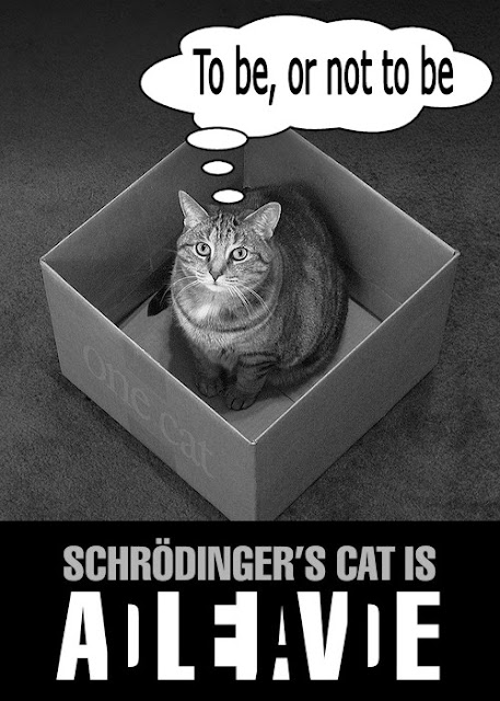 Schrödinger's Cat is.... AdLeIaVdE | To be, or not to be
