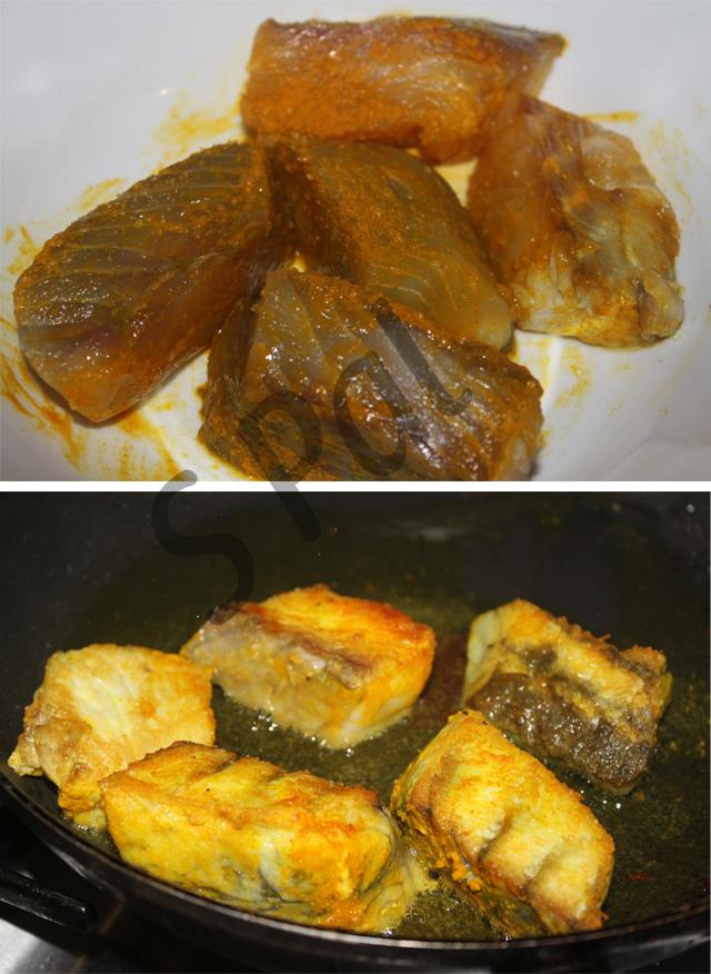 Aussie barramundi in indian fish curry mum can you for Barramundi fish taste