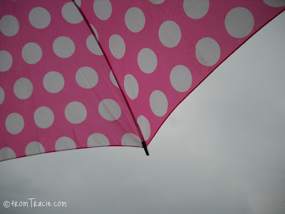 rain on the umbrella