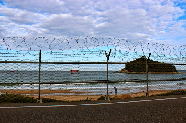 barbed wire fences, dmz