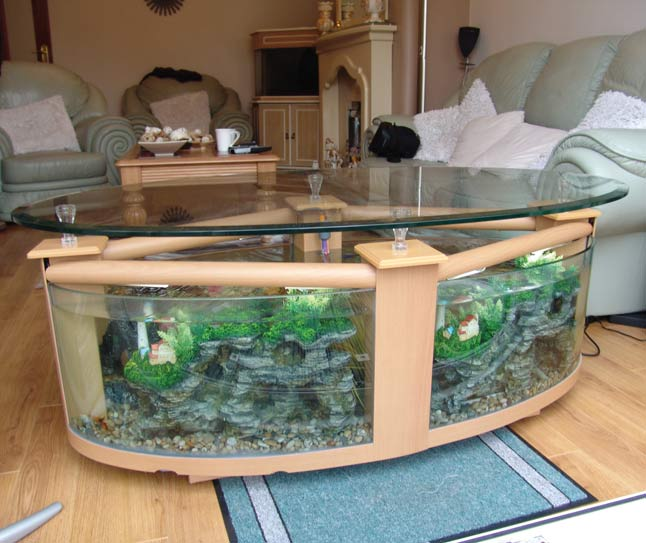 Aqua Fanatic Unique Aquariums For Home Decoration