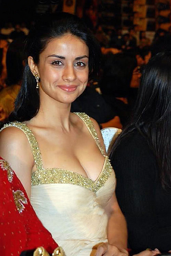 Gul Panag Show Breast