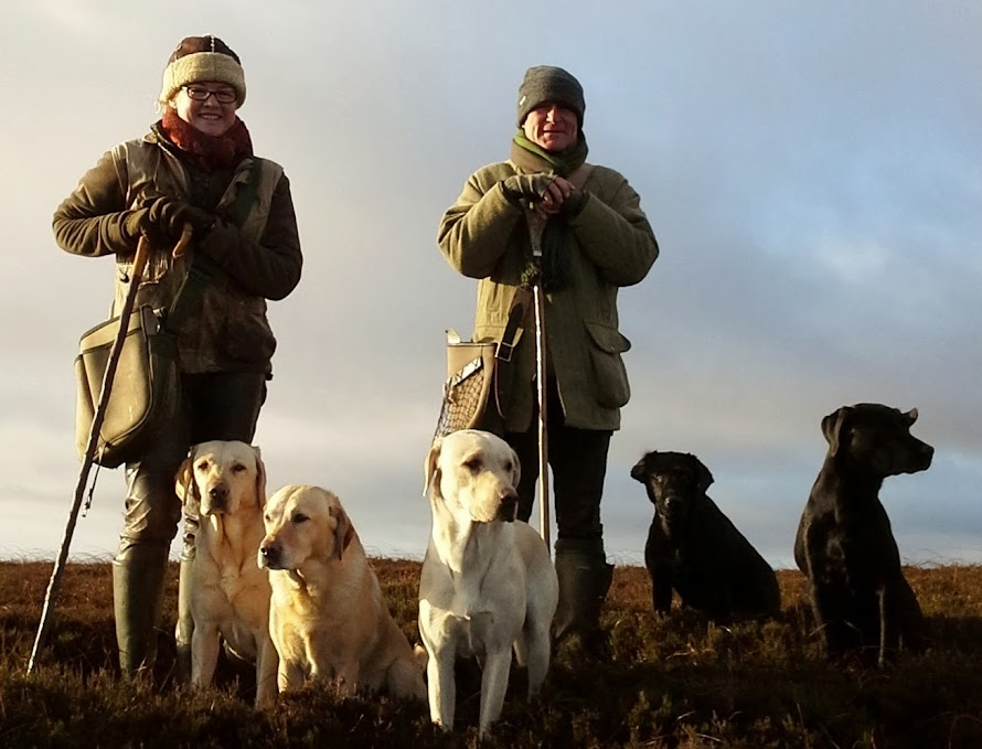 grouse shooting 2013 -2