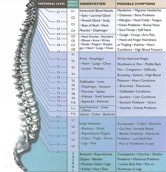 Living A Healthy And Pleasure Life Spinal Cord Injury