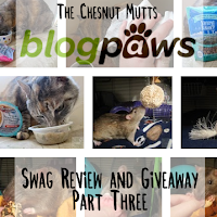 The Chesnut Mutts BlogPaws Swag Review and Giveaway Part Three