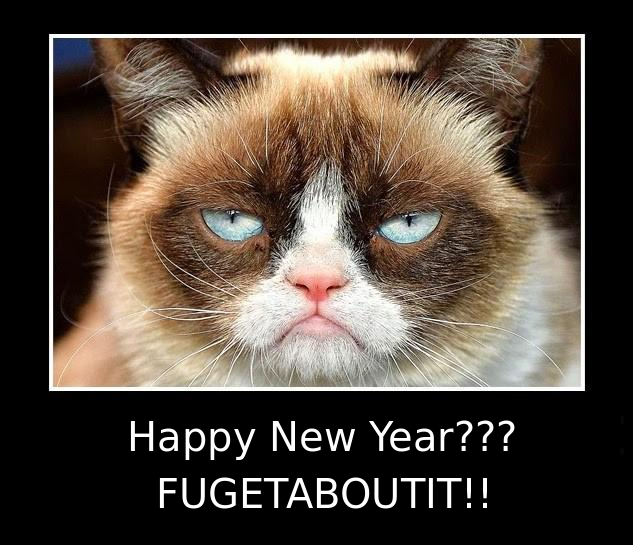grumpy cat new years   28 images   happy new year grumpy