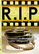 Premio de Microrrelatos, VI Certamen de Microrrelatos Arvikis-Dragonfly 2015