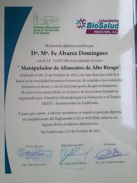 CARNET MANIPULADOR ALIMENTOS ALTO RIESGO