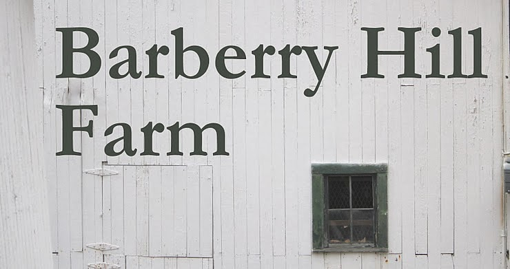 Barberry Hill Farm