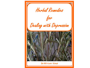 Herbal Remedies for Dealing with Depression Book