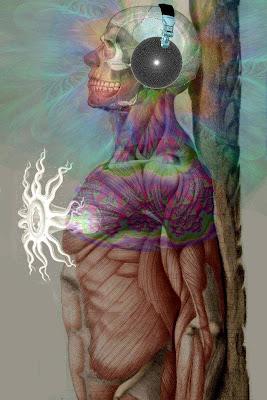 Archon Endgame FEEL+IT