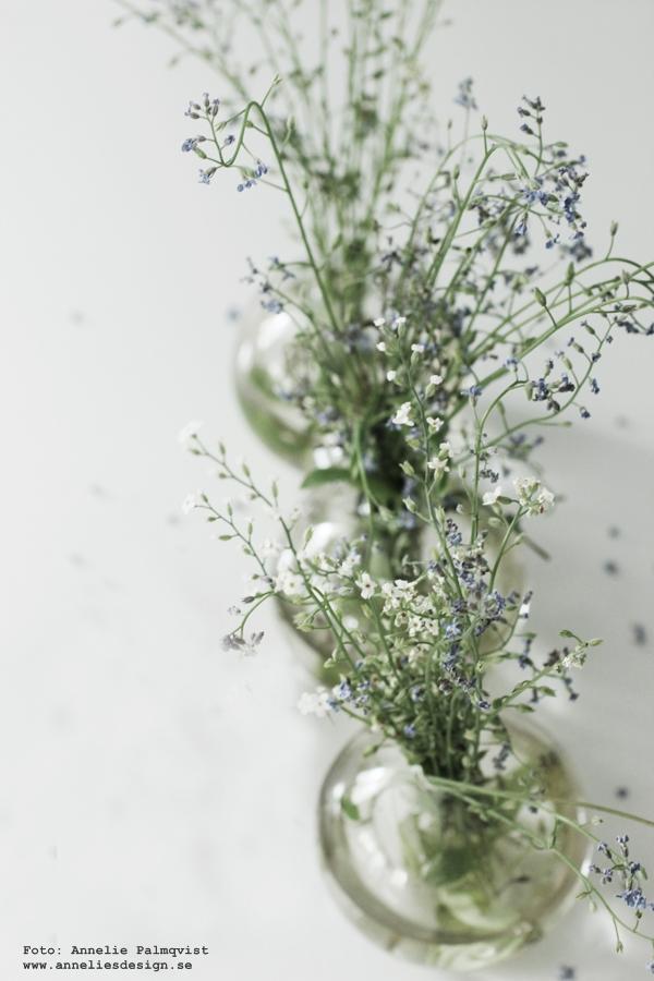 vas, sommarblommor, blommor,
