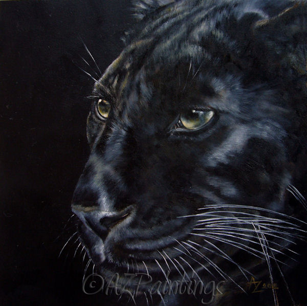 Black As Night: 1000+ Ideas About Black Panther Drawing On Pinterest