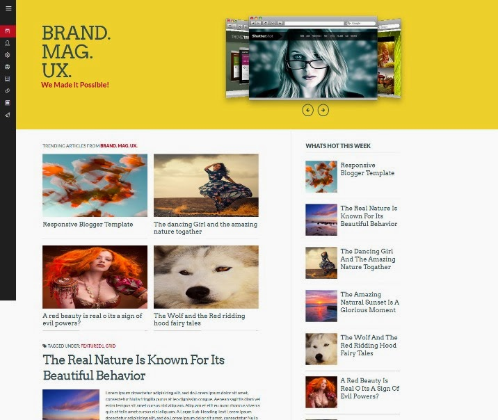 Brand Mag UX
