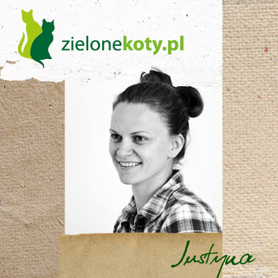 http://szydelkiemwoko.blogspot.com/