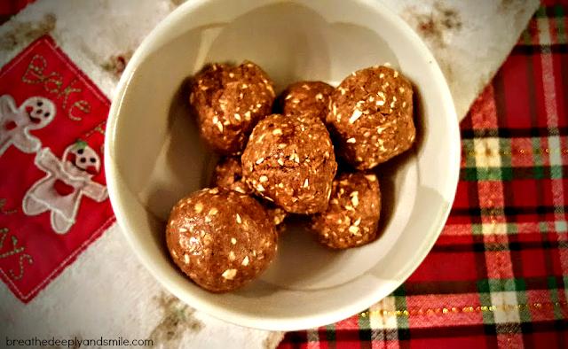 gingerbread-protein-bites-sunwarrior-3