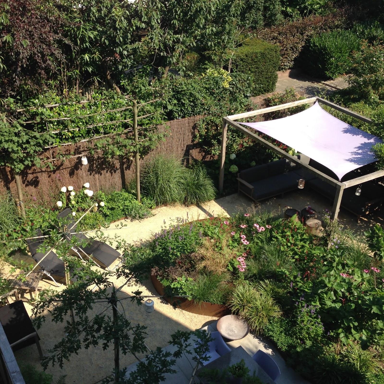 Cyntuinen tuinontwerp &  advies