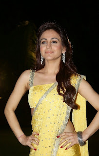 Aksha Pardasany Latest Pictures in Yellow Saree at Dr Salim Audio Launch ~ Bollywood and South Indian Cinema Actress Exclusive Picture Galleries