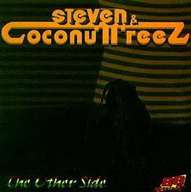 Steven & Coconut - The Other Side