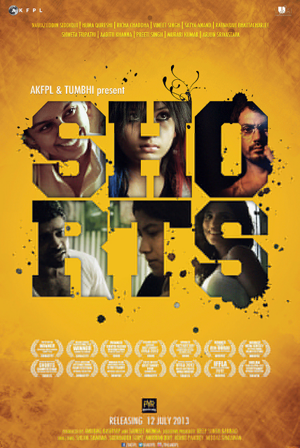 watch shorts 2013 watch online free dvd new bollywood