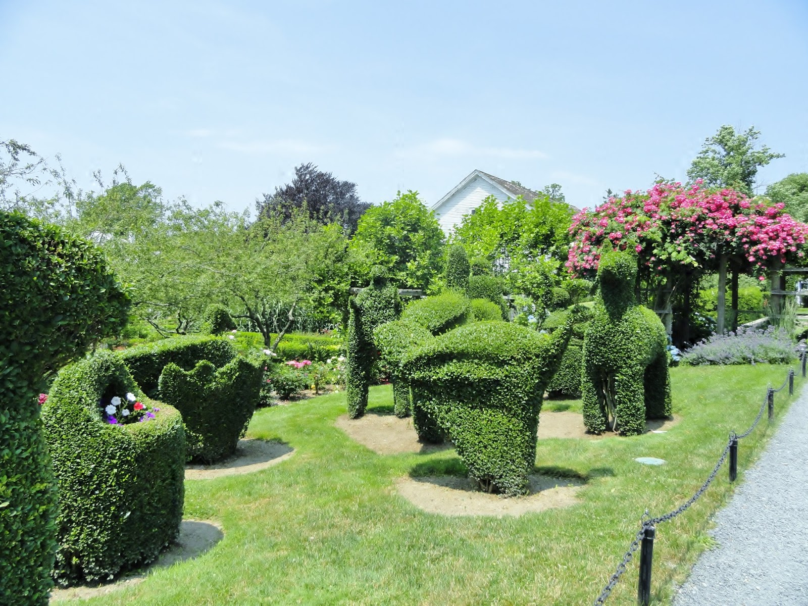 Antique Homes And Lifestyle Green Animals Topiary Garden Portsmouth Ri