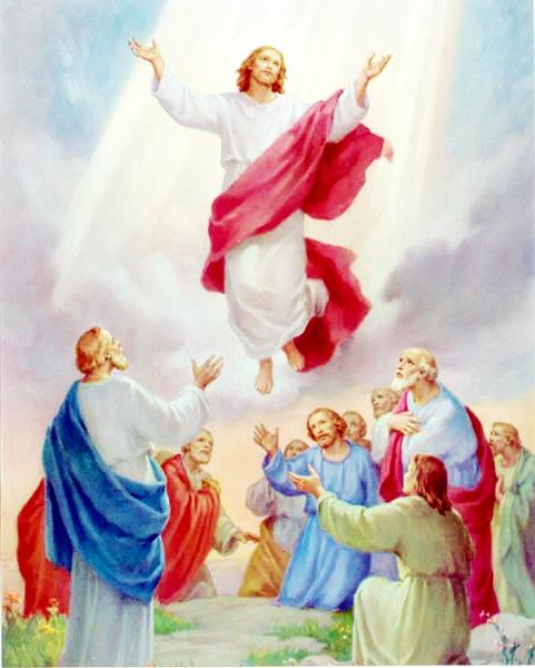 Kết quả hình ảnh cho hình ảnh Chúa Giêsu lên trời