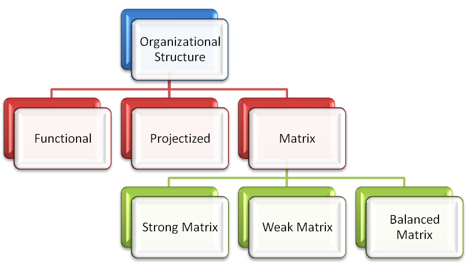 matrix structures Start studying matrix structure learn vocabulary, terms, and more with flashcards, games, and other study tools.