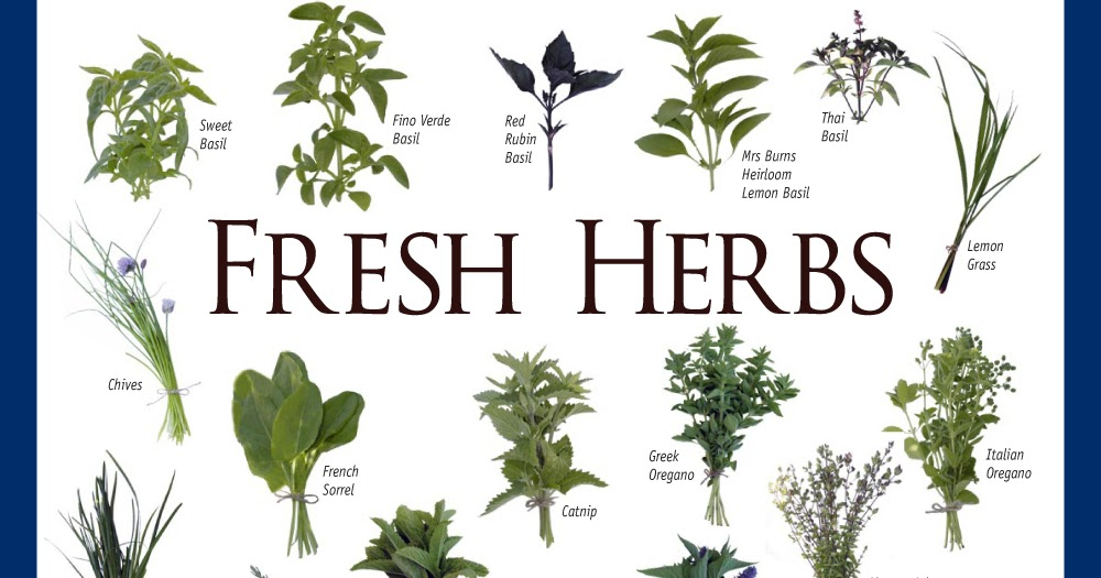 identification of an adulterated herb The 2015 herbalgram herb market report ranked saw palmetto products  of  ongoing issues related to botanical identity and adulteration, thus allowing  quality.