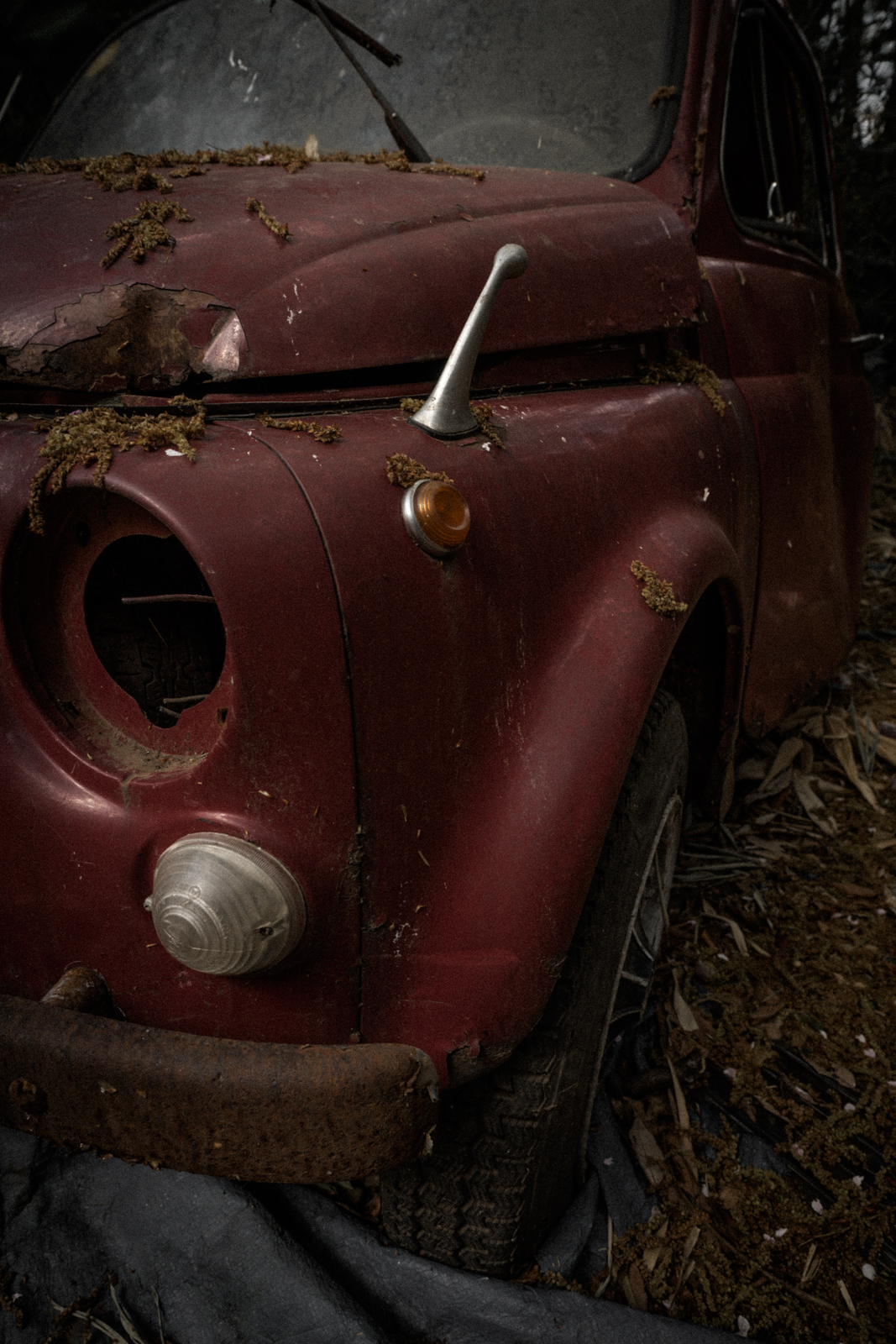 廃車されたビークルの写真