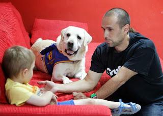 Gracias al perro, se gana la atención de un niño con autismo.