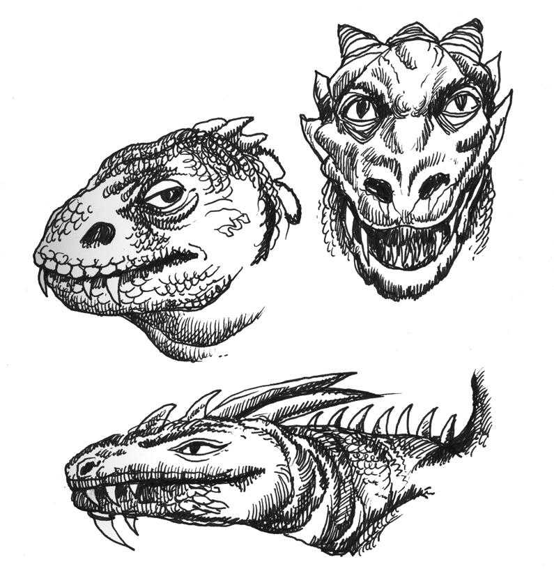 dragon lizard faces