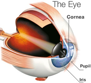 Lasik Eye Surgery Meant for Reshaping Cornea