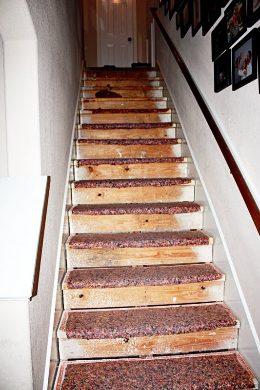 Ripping The Carpet Off Our Stairs