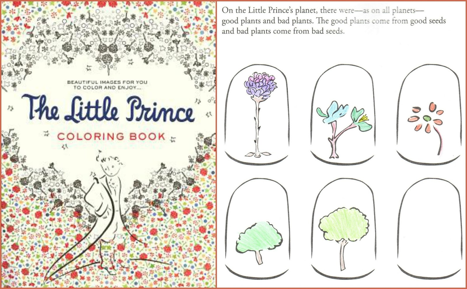 beth fish reads adult coloring books a twist the little prince coloring book