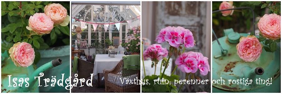 Trädgård O Sånt : Isas trädgård samma bord med helt annan stil
