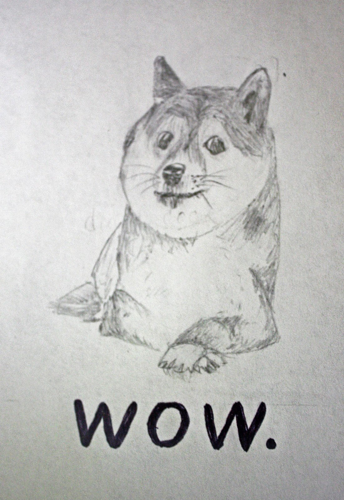 pencil drawing of doge says wow