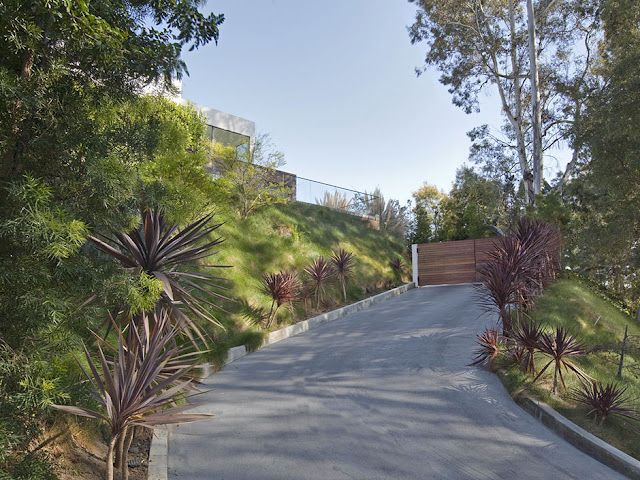 Photo of the driveway up the hill to the gate into the property