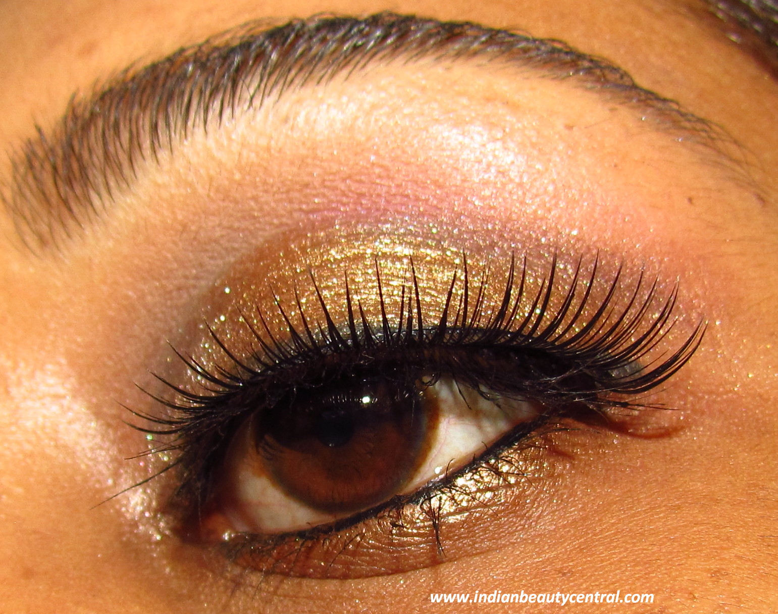 Indian Beauty Central Friends Wedding Reception Party Eye Makeup Look