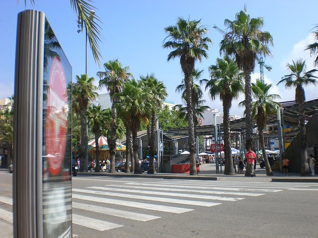 Španija  Floret-del-mar-1
