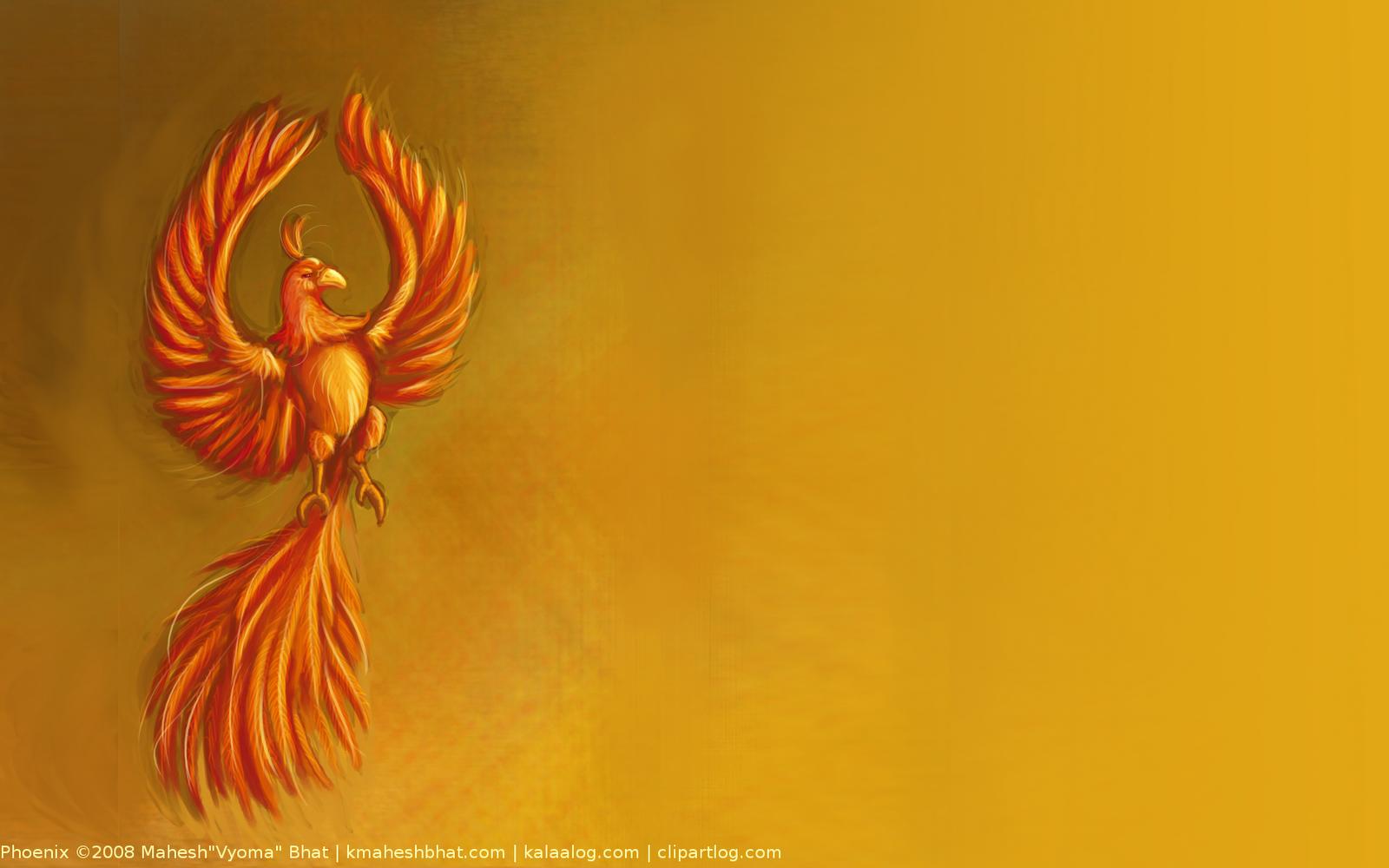 phoenix wallpaper wallpaper for desktop